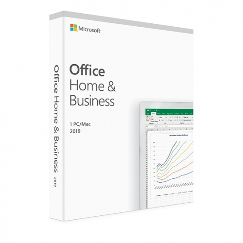 Office Home and Business 2019 SLO Medialess MSDF3010