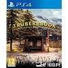 Trüberbrook (PS4)