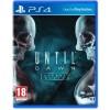Until Dawn- PlayStation Hits (PS4)